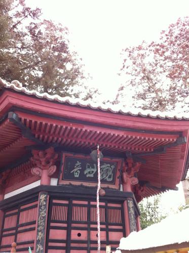 補陀寺と桜の物語